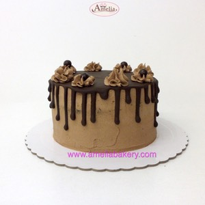 Pastel-Chocolate-drip-cake web