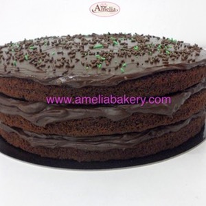 Pastel Tarta Chocolate Naked www.ameliabakery.com