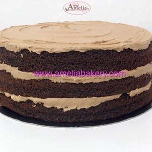 Pastel Tarta Chocolate Nutella Naked www.ameliabakery.com